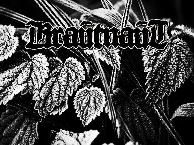 Krautnaut - Krautnaut [EP] (2011)