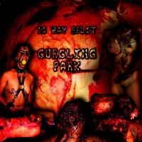 Gurgling Park - 2011