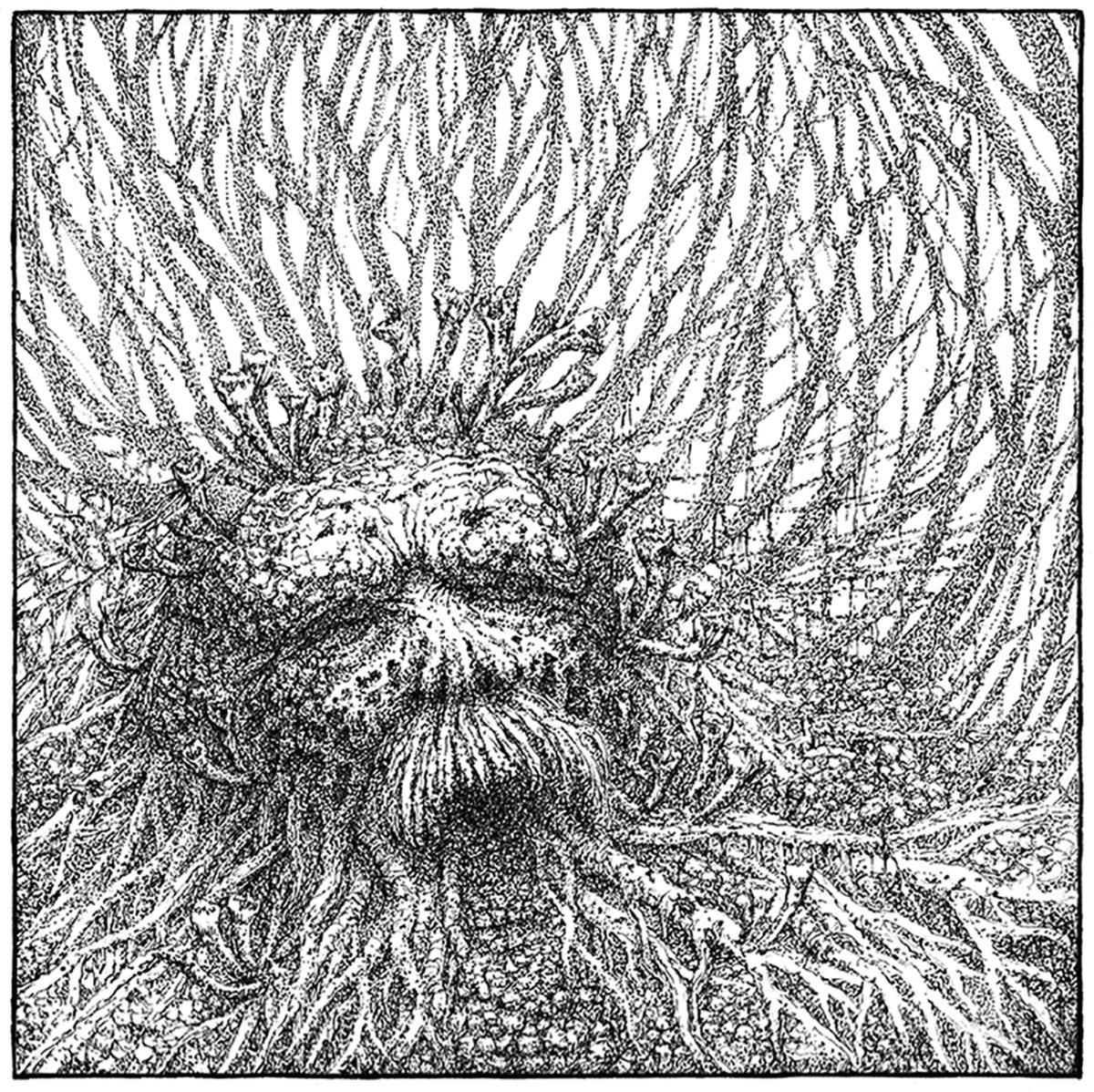 Nemorous - Nemorous [EP] (2021)