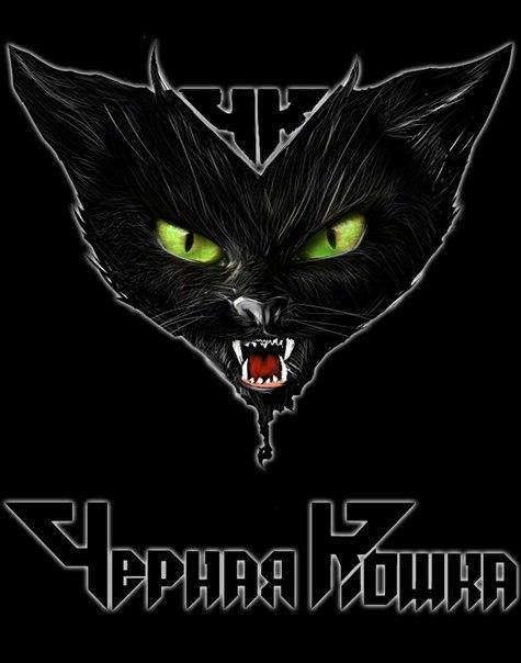 Картинка банды черная кошка